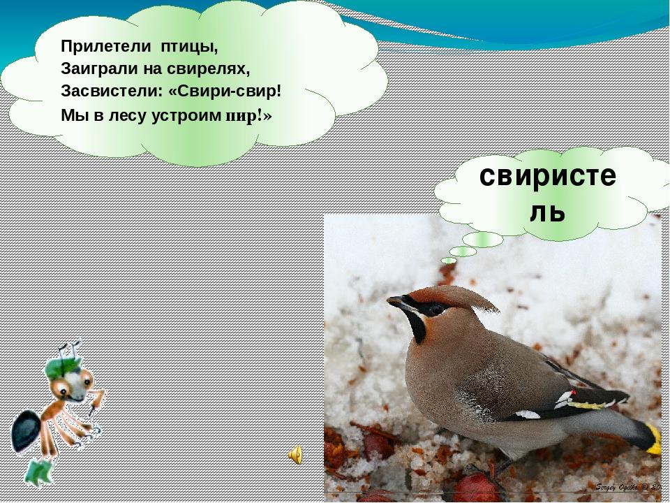 Прилетели птицы, Заиграли на свирелях, Засвистели: «Свири-свир! Мы в лесу уст...