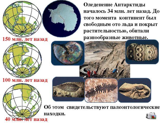 Картинки по запросу палеонтология антарктида