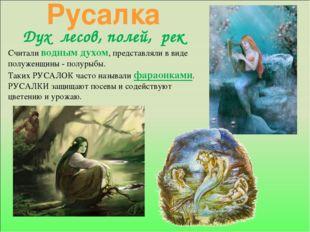 Русалка Дух лесов, полей, рек Считали водным духом, представляли в виде полуж
