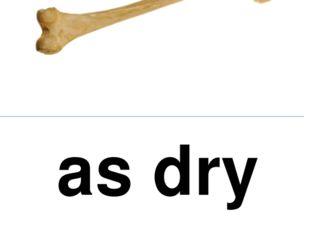 as dry as a bone