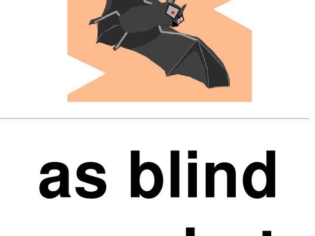 as blind as a bat