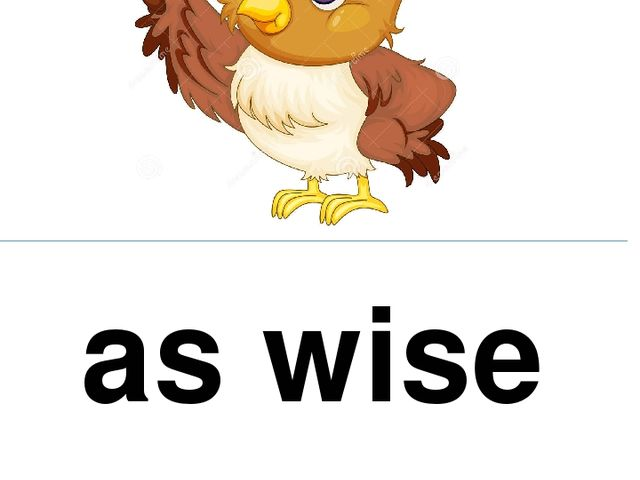 as wise as an owl