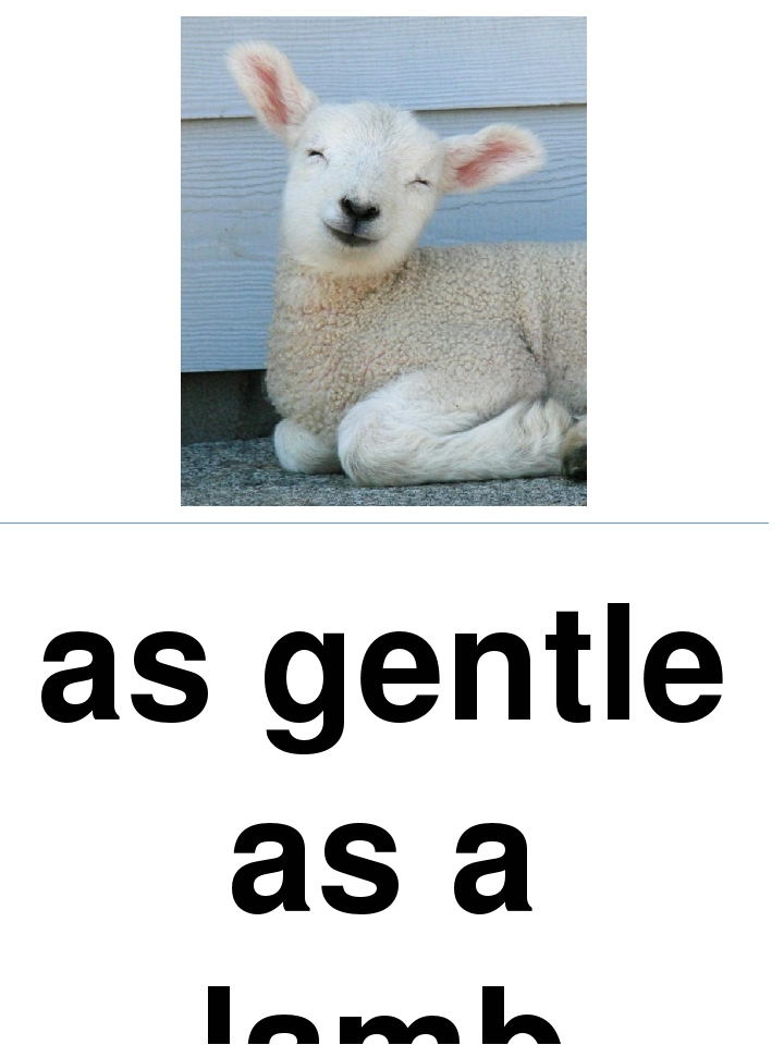 as gentle as a lamb