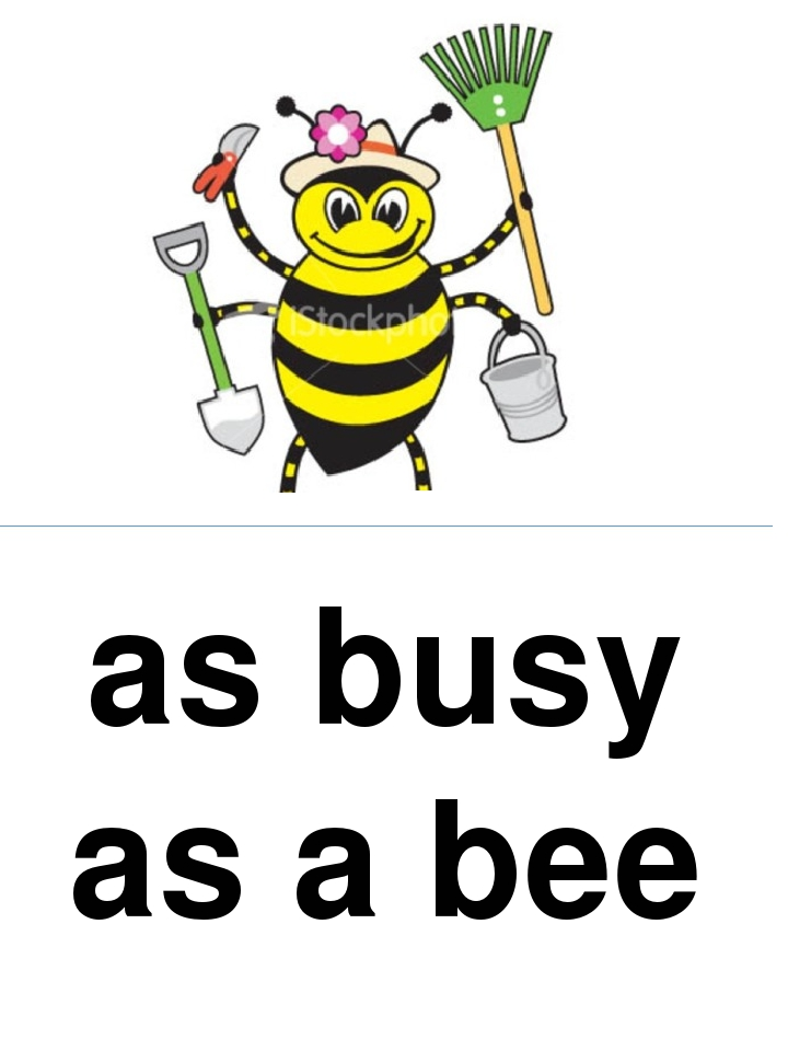 as busy as a bee