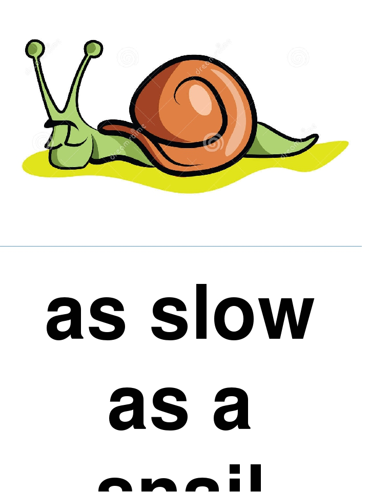 as slow as a snail