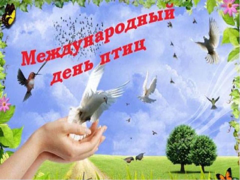 Днем рождения, открытки с днем птицы