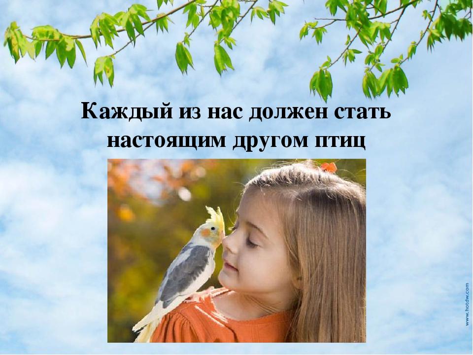 Каждый из нас должен стать настоящим другом птиц