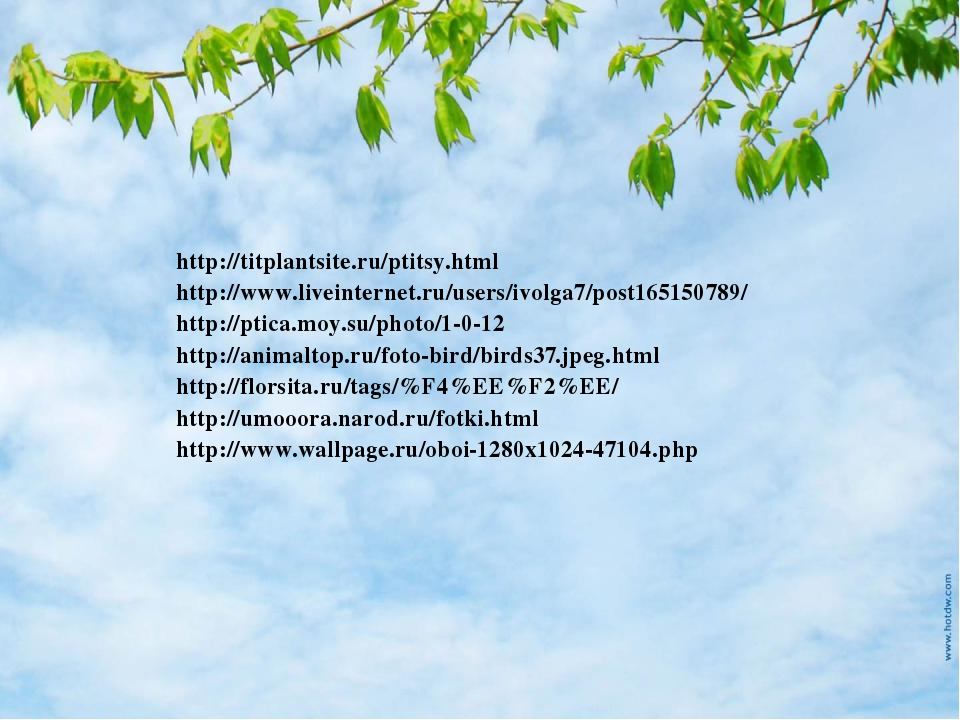 http://titplantsite.ru/ptitsy.html http://www.liveinternet.ru/users/ivolga7/p...