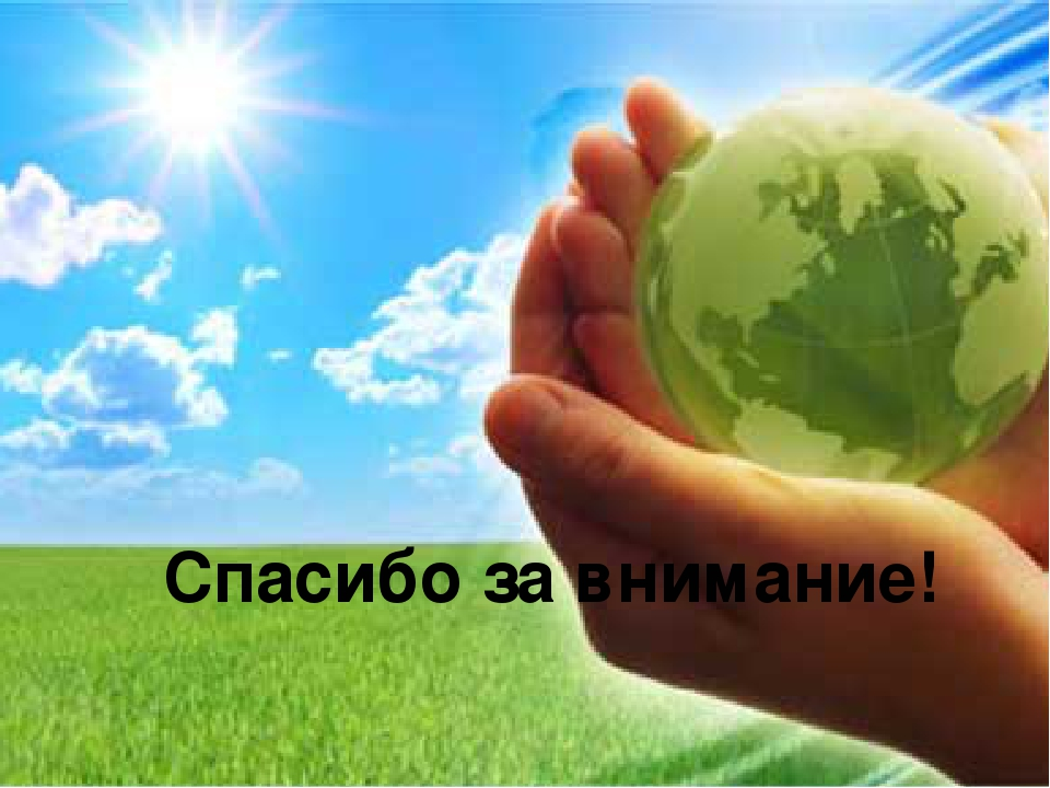 essays on environment protection The best environment essays -- essays on the environment -- articles and essays about the environment from around the net.