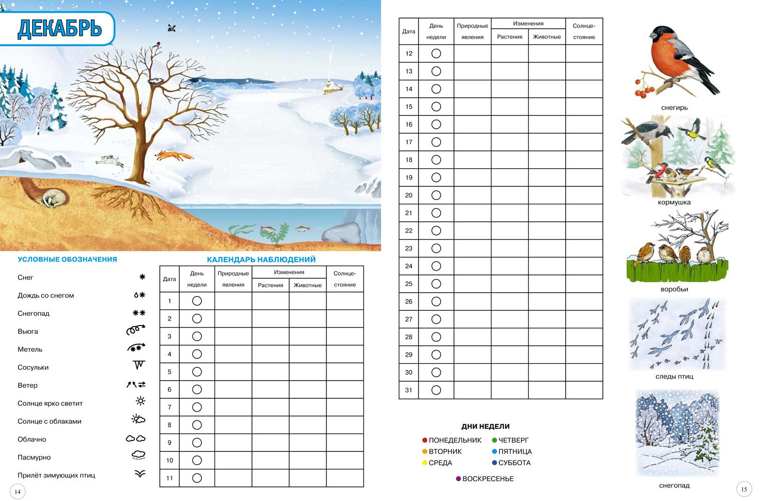 Картинка календарь погоды детский сад