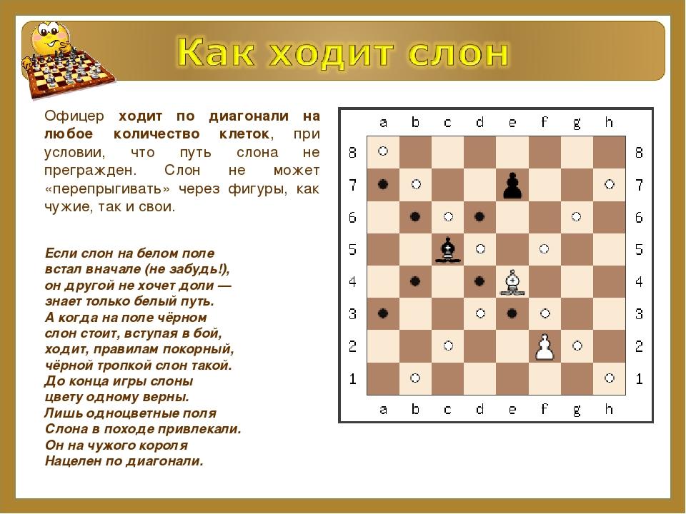 Фигуры знакомство шахматные