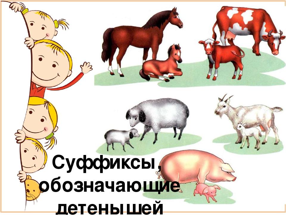 Цветами корзины, картинки животные с детенышами для детского сада