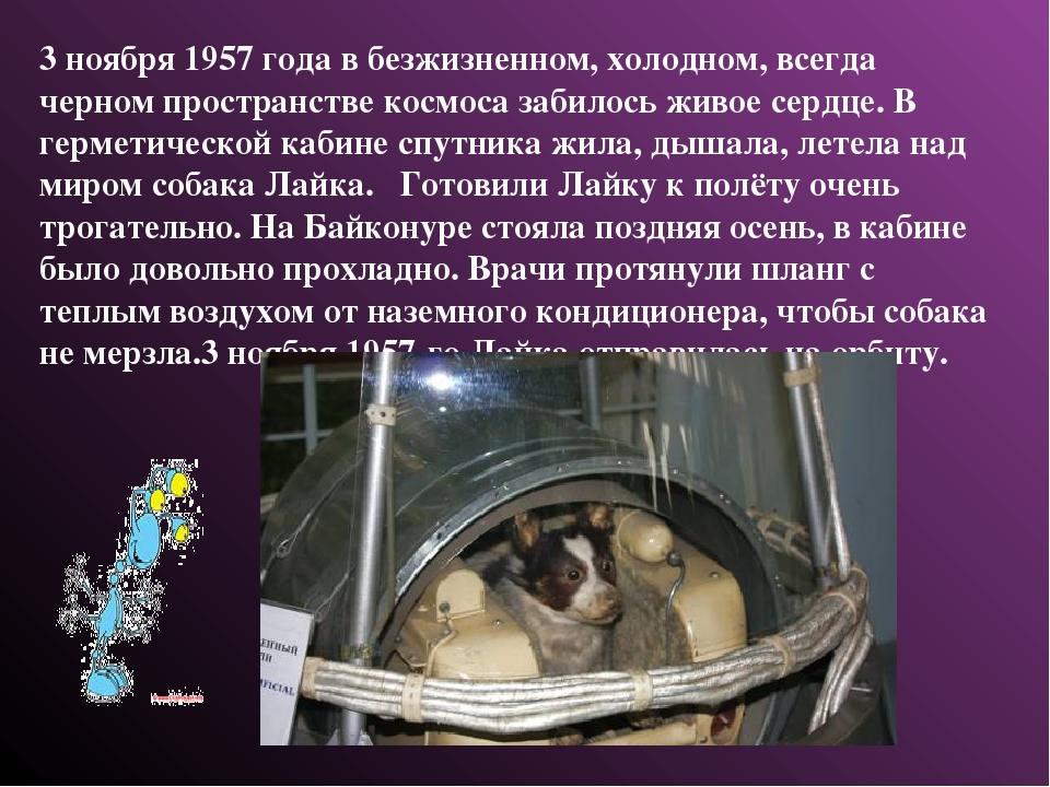 3 ноября 1957 года в безжизненном, холодном, всегда черном пространстве космо...