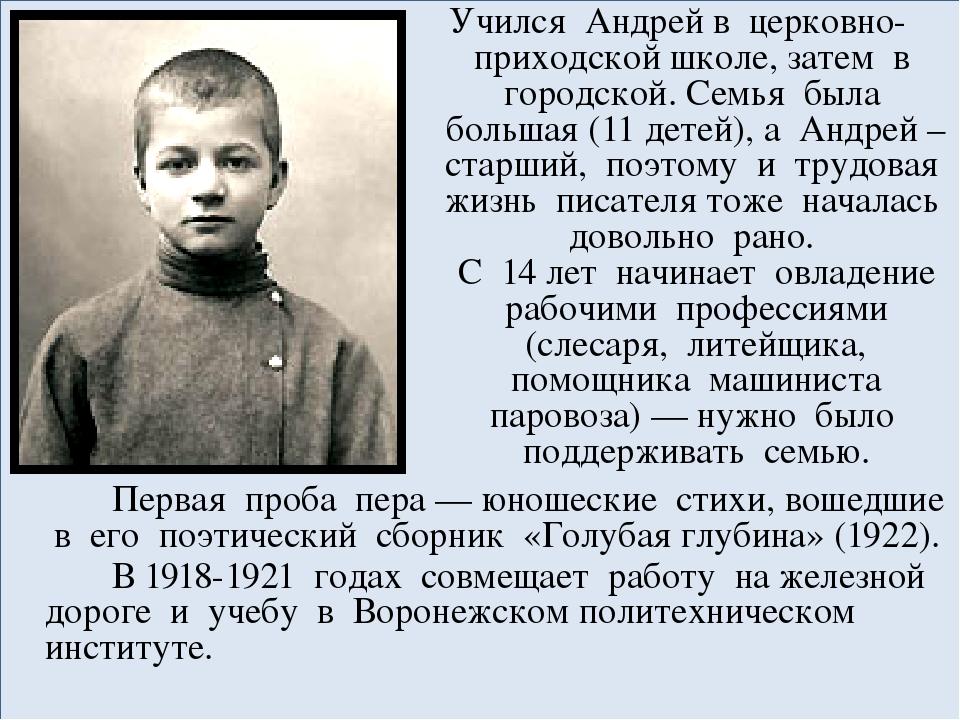 Учился Андрей в церковно-приходской школе, затем в городской. Семья была бол...