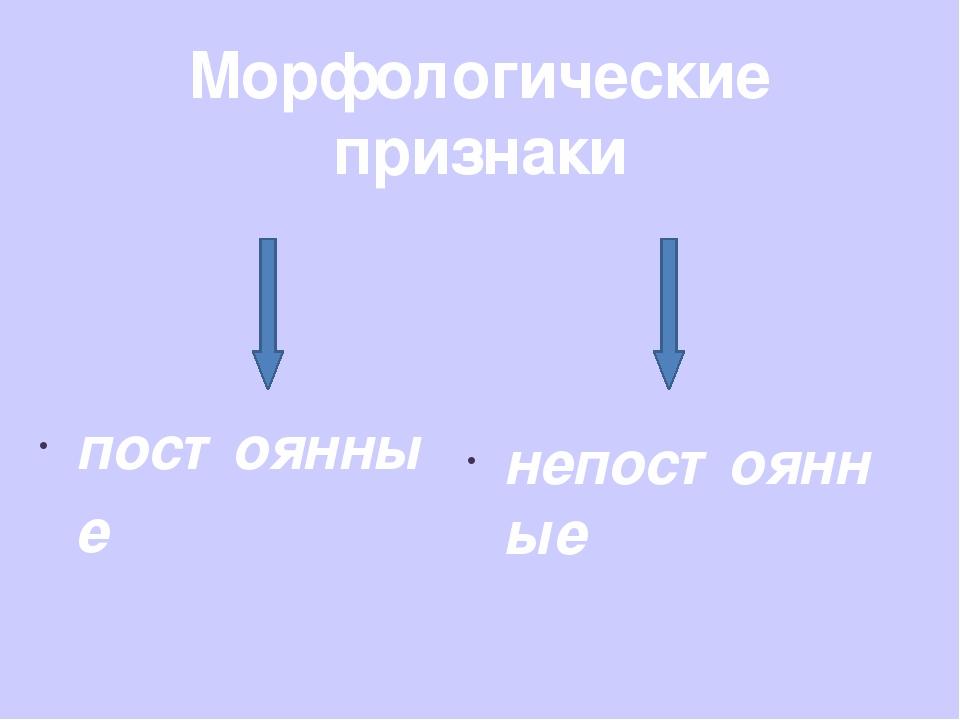 Морфологические признаки постоянные непостоянные