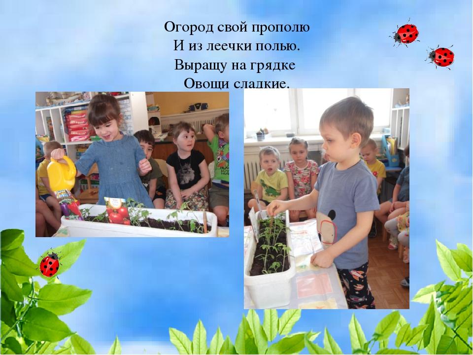 Огород свой прополю И из леечки полью. Выращу на грядке Овощи сладкие.