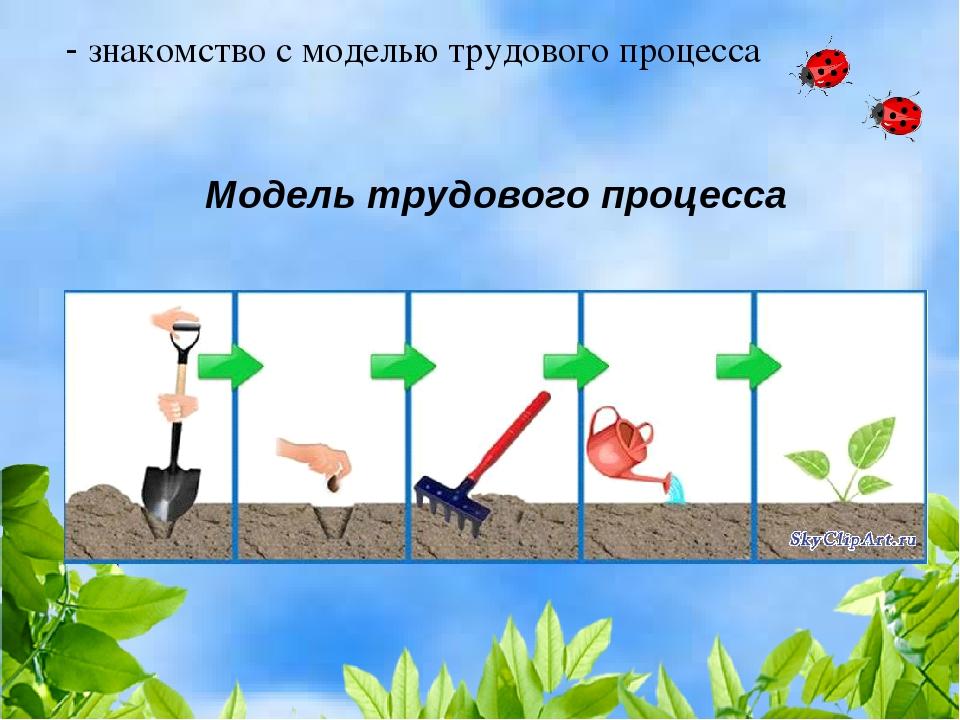 - знакомство с моделью трудового процесса