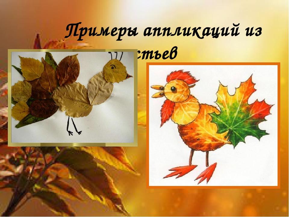 Примеры аппликаций из листьев