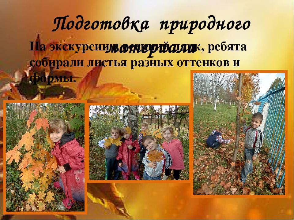 Подготовка природного материала На экскурсии в осенний парк, ребята собирал...