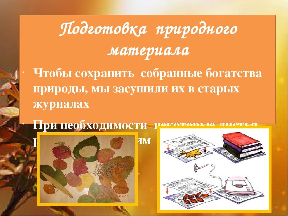 Подготовка природного материала Чтобы сохранить собранные богатства природ...