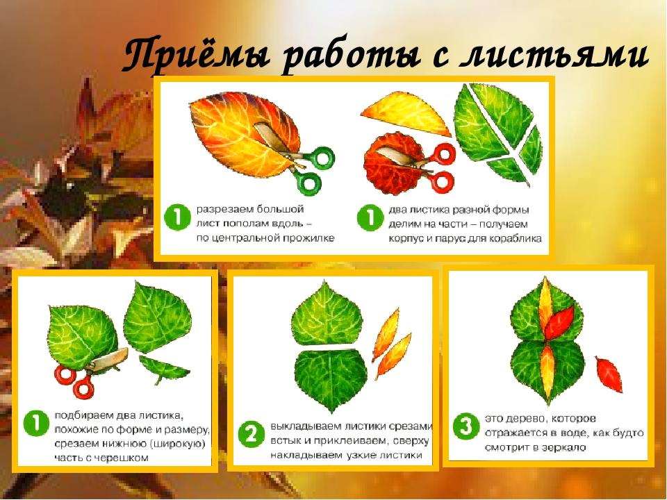 Приёмы работы с листьями