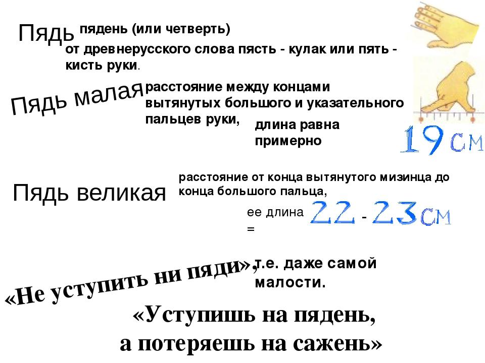 Пядь пядень (или четверть) от древнерусского слова пясть - кулак или пять - к...
