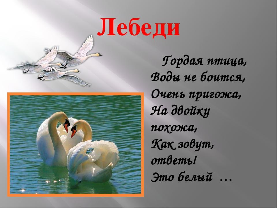 стихи про лебедя на пруду
