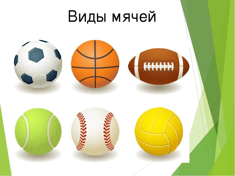 Картинки мячей разного вида спорта