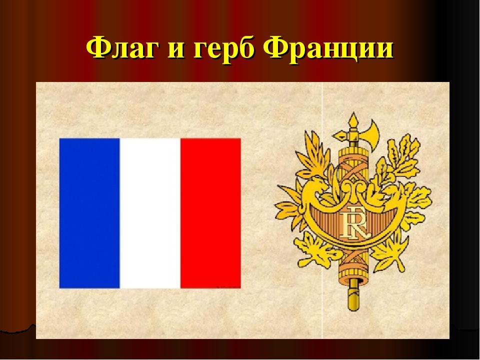 герб и флаг франции фото стиле