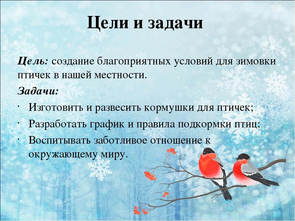 Зима цели и задачи