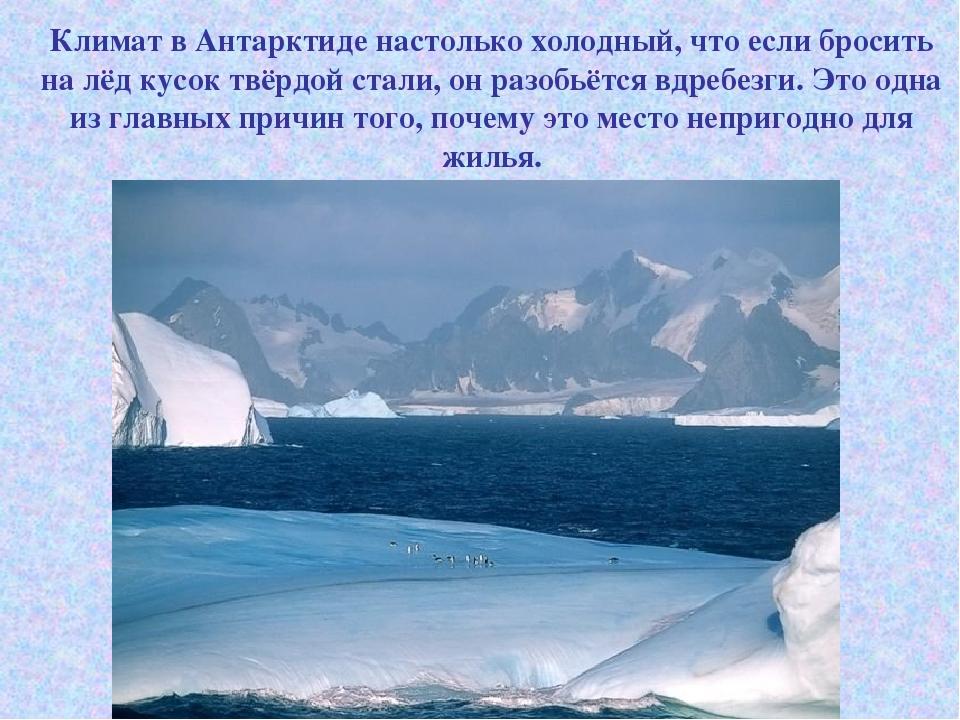 Климат в Антарктиде настолько холодный, что если бросить на лёд кусок твёрдой...