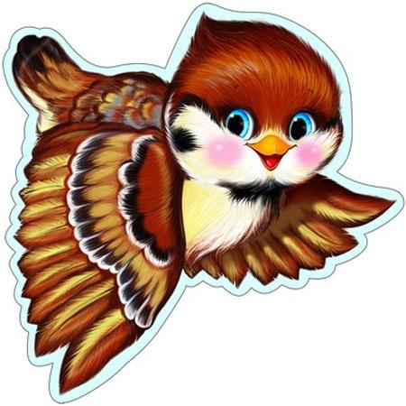 картинки для оформления птицы