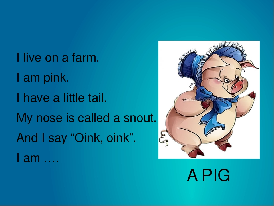 A PIG I live on a farm. I am pink. I have a little tail. My nose is called a...