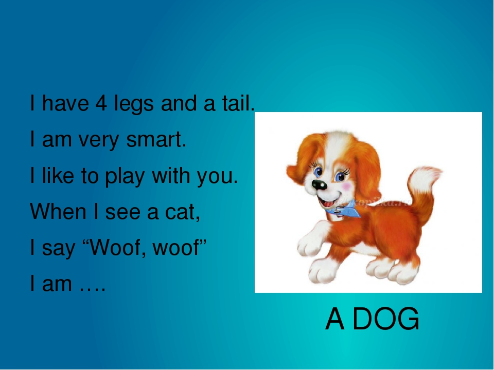 A DOG I have 4 legs and a tail. I am very smart. I like to play with you. Whe...