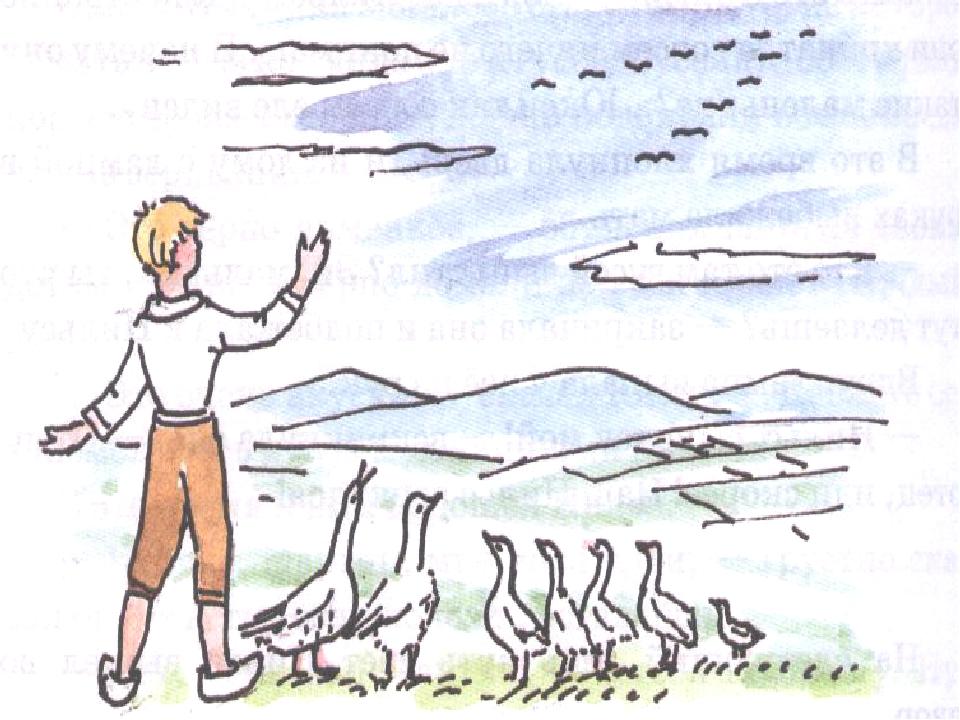 пороге раскраска нильса из сказки чудесное путешествие нильса с дикими гусями эстетикой