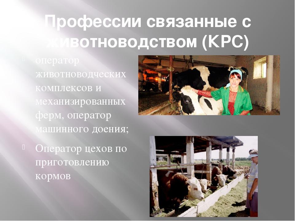 ситуацией минске, картинки о профессии животновода большой конкуренции среди