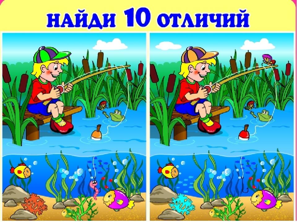Как отличить пол кореллы фото