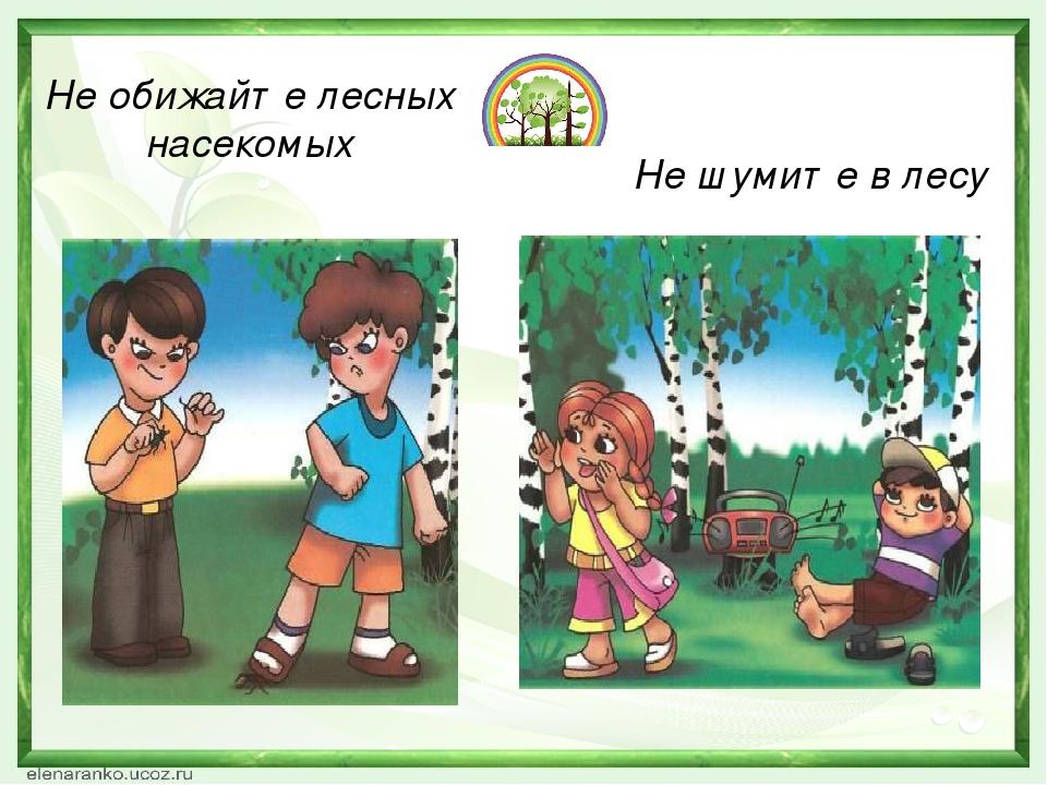 Не обижайте лесных насекомых Не шумите в лесу