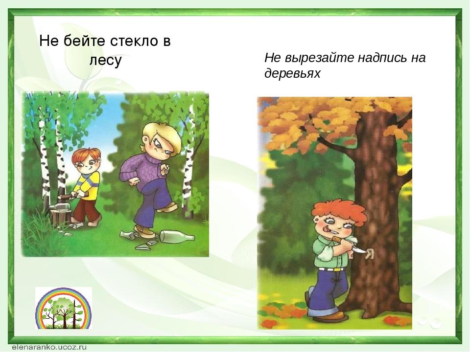 Не бейте стекло в лесу Не вырезайте надпись на деревьях