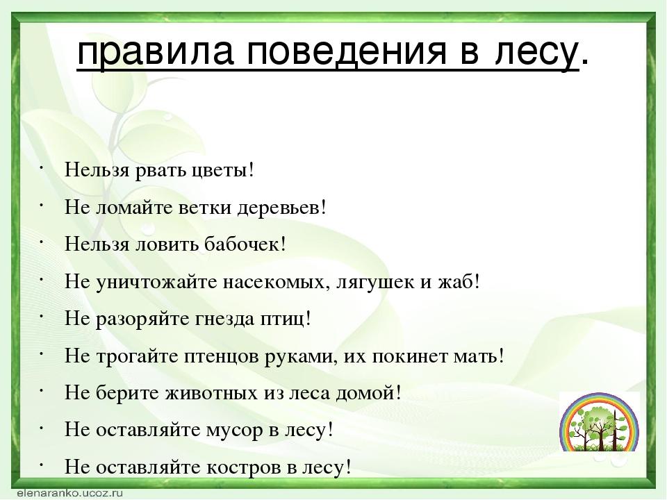 правила поведения в лесу. Нельзя рвать цветы! Не ломайте ветки деревьев! Нель...