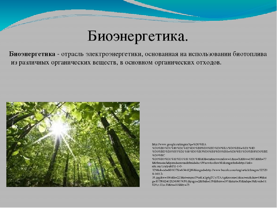 Биоэнергетика. Биоэнергетика - отрасль электроэнергетики, основанная на испол...
