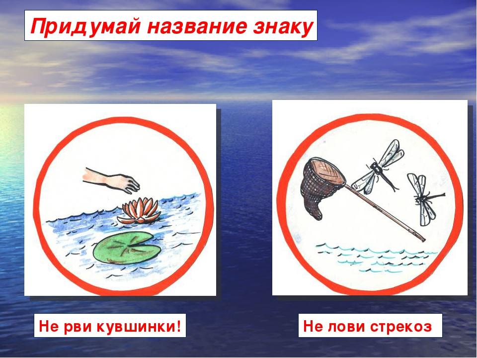 картинки и знаки правила поведения у воды трупы будут