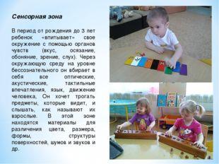 Сенсорная зона В период от рождения до 3 лет ребенок «впитывает» свое окружен
