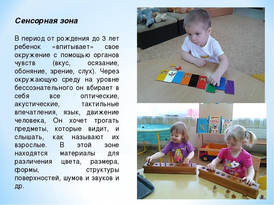 Сенсорная зона В период от рождения до 3 лет ребенок «впитывает» свое окружен...