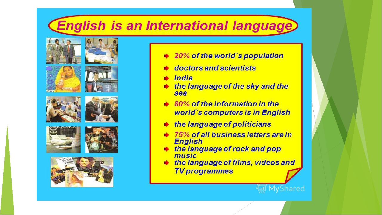 essay of english language in world Among them, the english language is an international language that is spoken all over the world it is spoken by more than 300 million native speakers, and between 400 and 800 million foreign users over the years, english has been of great importance for us.