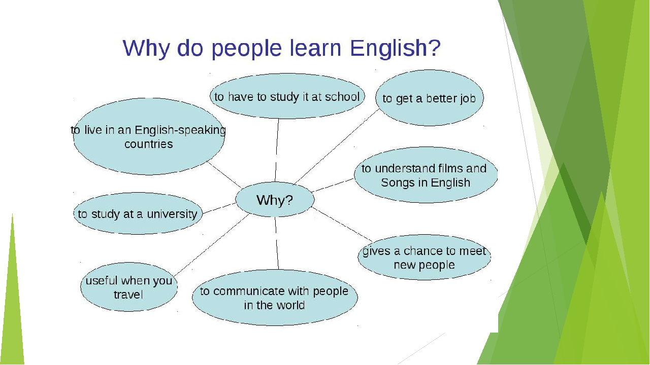 why learning vocabulary is important english language essay The top 1,000 vocabulary words have been as the capitals take on tampa bay in another important acquiring the rudiments of the english language.