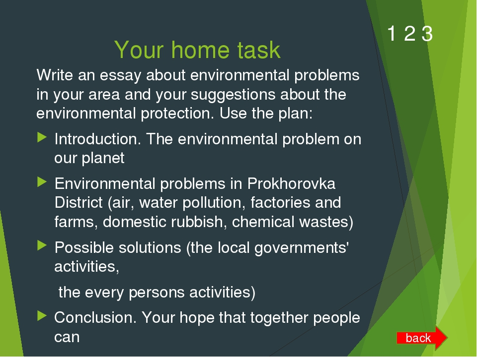 essays about environment protection