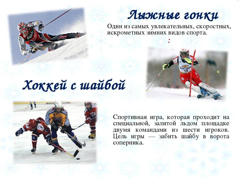 Реферат по физре зимние виды спорта 3242