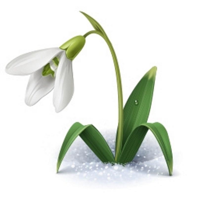 была картинка символами весна ощутить