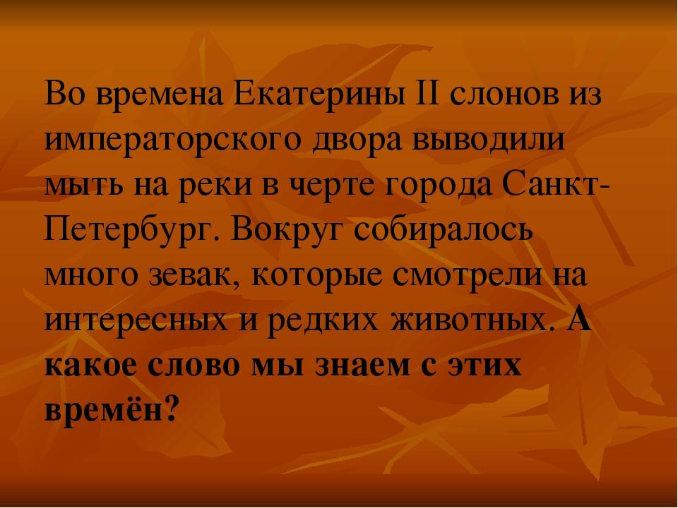 Во времена Екатерины II слонов из императорского двора выводили мыть на реки...
